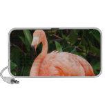 Pink Flamingo Portable Speakers