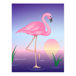 Pink Flamingo Post Card