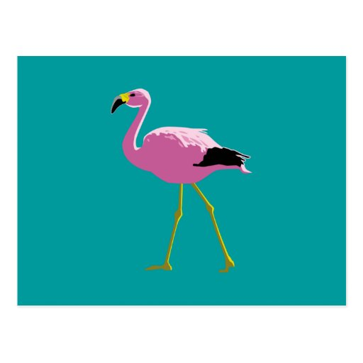 Pink Flamingo Postcards