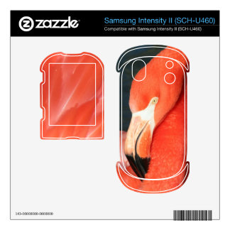 Pink Flamingo Samsung Intensity II SCH-U460 Skin Samsung Intensity Skin