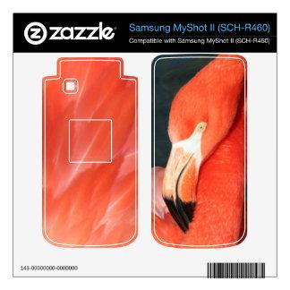 Pink Flamingo Samsung MyShot II SCH-R460 Skin Samsung MyShot II Skin