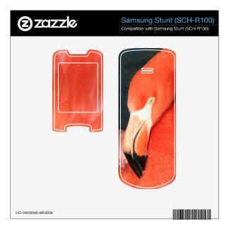 Pink Flamingo Samsung Stunt SCH-R100 Skin Samsung Stunt Decals