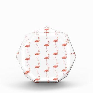 Pink Flamingo Simple Pattern Award