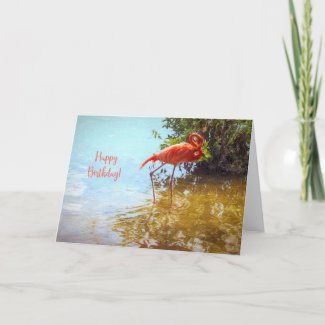Pink Flamingo wading in water Happy Birthday Card