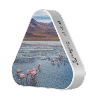 Pink Flamingoes in Bolivia Bluetooth Speaker
