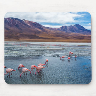 Pink Flamingoes in Bolivia Mouse Pad