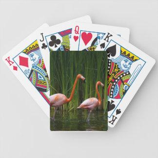 pink flamingos bicycle playing cards