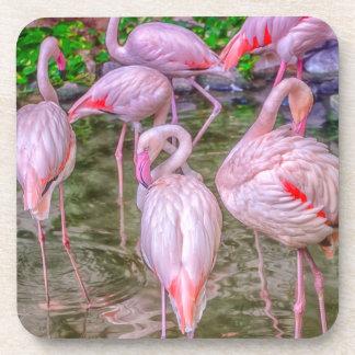Pink Flamingos Coaster