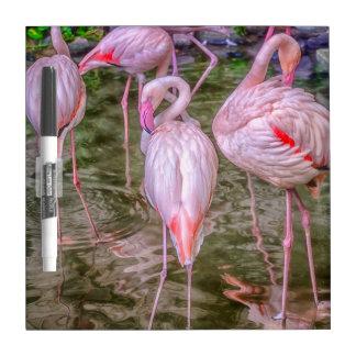 Pink Flamingos Dry-Erase Board