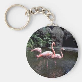 Pink flamingos in pond St Petersburg Florida U Key Chain