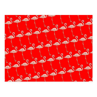 Pink Flamingos on Parade Postcard