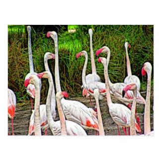 Pink Flamingos Painting Postcards