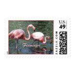 Pink Flamingos Postage