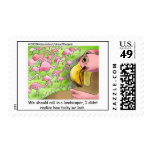 Pink Flamingos Postage Stamps