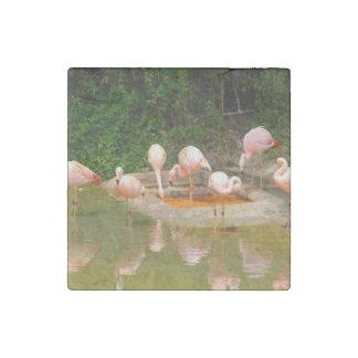 Pink Flamingos Stone Magnet