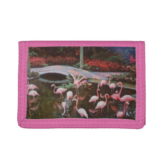 Pink Flamingos Trifold Wallet