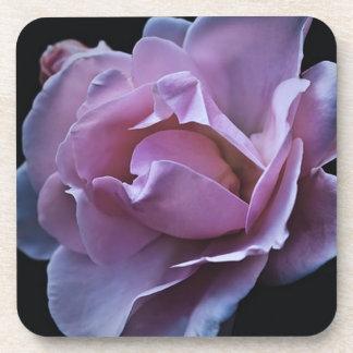 pink flor de rosa posavasos