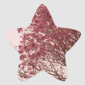 Pink Floral Branches Star Sticker