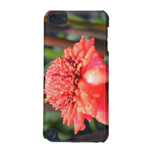 Pink Floral Bud Speck iPod Touch Case