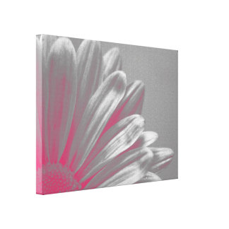 Pink Floral Highlights Canvas Print