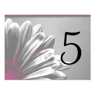 Pink Floral Highlights Table Number Postcard