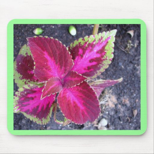 Pink Floral Products Mouse Pad