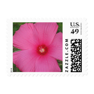 Pink Floral Small Size Postage Stamp