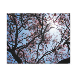 Pink Floral Tree Branches Canvas Print