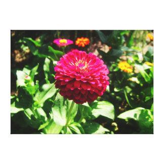 Pink Flower Amidst Garden Canvas Print