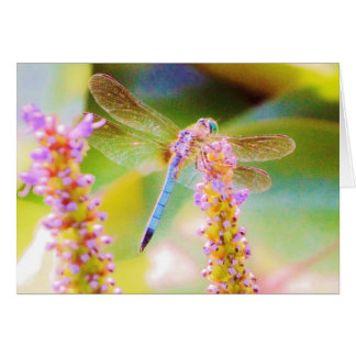 pink  flower and dragon fly card