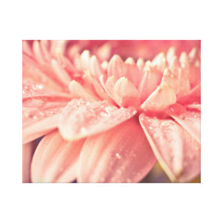Pink flower and drops canvas