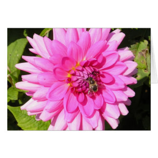 Pink Flower & Bee Card
