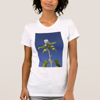 Pink Flower Bud in a Blue Sky T-Shirt