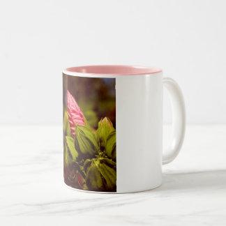 Pink Flower Bud Photo Mug