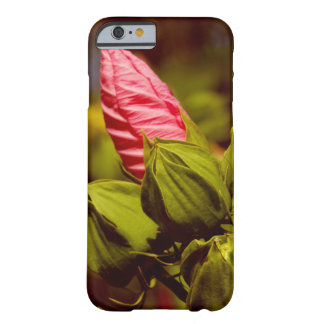 Pink Flower Bulb Photo iPhone / iPad case