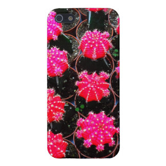 Pink Flower Cactus Plant Photography iPhone 5/5S Cover