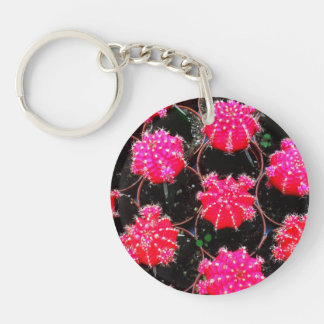Pink Flower Cactus Plant Photography Keychain