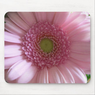 Pink Flower Close Up Big Flower Mouse Pad