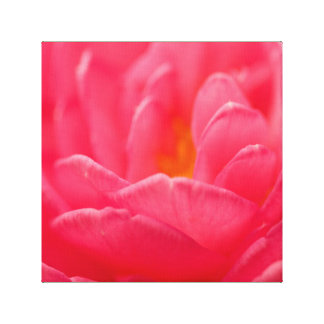 Pink flower design cards and paper products canvas print
