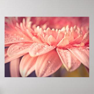 Pink flower dream poster