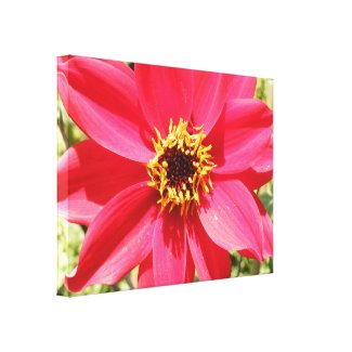 Pink Flower Gallery Wrapped Canvas
