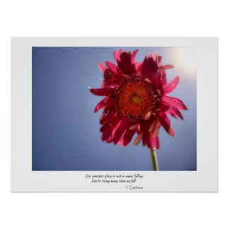 Pink Flower Glory Poster