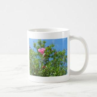 Pink Flower in Bermuda Coffee Mug