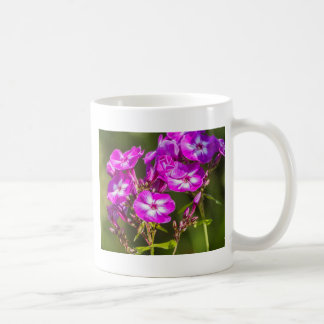 pink flower in the garden coffee mug