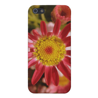 Pink flower iPhone 5 covers