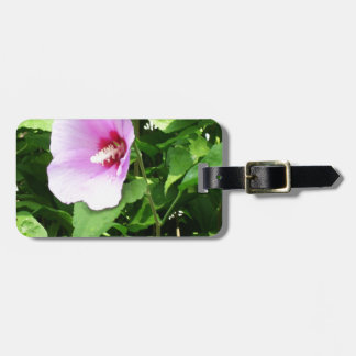 PINK Flower Lilly TEMPLATE Reseller Holiday Gifts Tags For Bags
