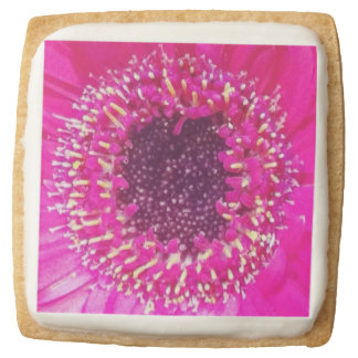 Pink Flower Square Sugar Cookie