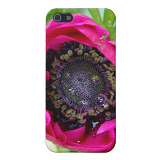 Pink flower not quite open case for iPhone SE/5/5s