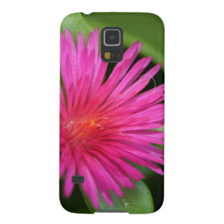 Pink Flower of Succulent Carpet Weed Galaxy S5 Covers