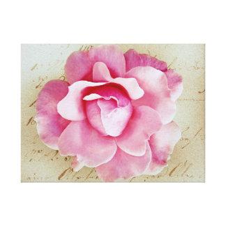 Pink Flower on Script Background Canvas Print